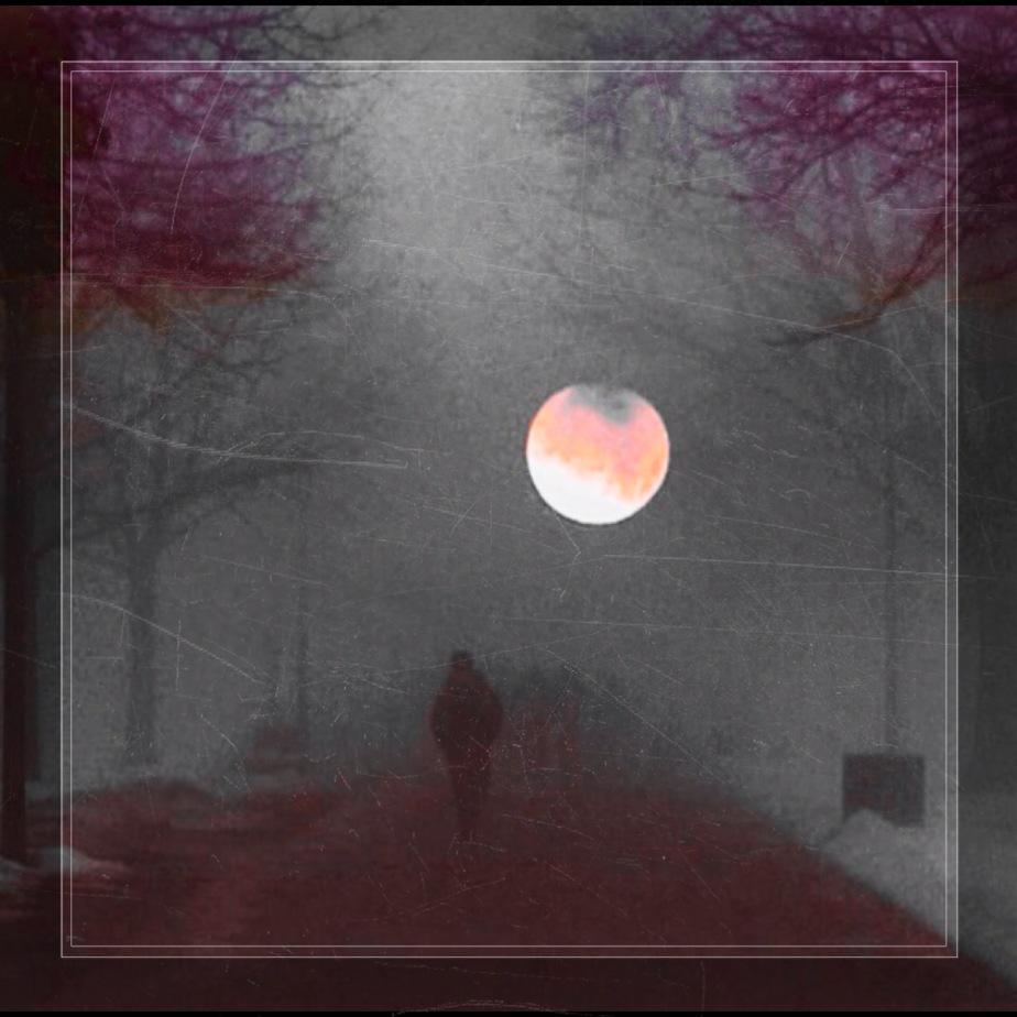 DAVID ARCANE ~ IMMORTAL(SUNRISE)